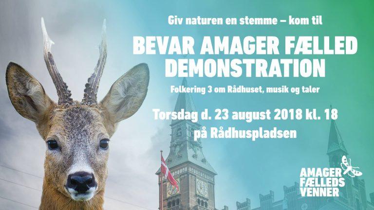 Programmet for menneskeringen om og demonstrationen på Rådhuspladsen